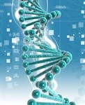 DNA's security system described by researchers