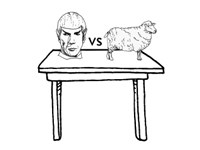 Episode 32: Sheep or Spock with Beth Strauss