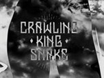 Crawling King Snake - Land Of The Blind