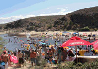 Beat the crowds to Up the Creek together with Bacardi Festival this year