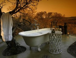 Since this is a family website, our intrepid chairman, columnist and Nature-lover ducked for this tasteful and evocative image of a typical bath at Madikwe.