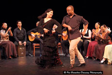 Intimate Peña Flamenca