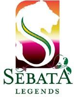 Sebata Group wins Best Established Black Business award