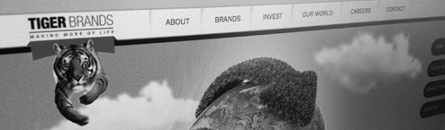 Amorphous recreate Tiger Brands Group website