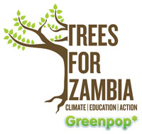 Trees for Zambia 2013 launched