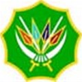 "SANDF says bulletproof vests were ""worn correctly"" in Bangui"