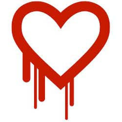 'Heartbleed' computer bug may rob you