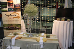 The Wedding Expo inspires