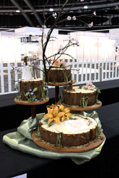 The Wedding Expo Cake Challenge winners