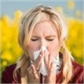 Hay fever season could peak following wet winter
