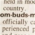 The ombudsman cometh