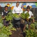 MySchool MyVillage MyPlanet funds edible garden