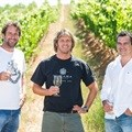 New chairman for Cape Winemakers Guild