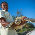 #KenyaLive - broadcasting for wildlife lovers