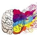 CFO to CEO - the right brain shift