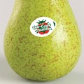 Promotional campaign launched for Abate Fetel pears
