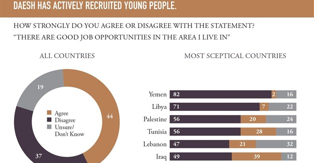 Fewer than half of Arab youth believe there are good job opportunities avaialble to them.