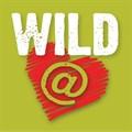Spar sponsors Wildfees festival