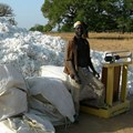 KKB via _Burkina Faso: cotton harvest in Dourtenga