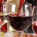 Top wines at The Chardonnay And Pinot Noir Festival