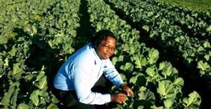 Photo via GroundUp - Albert Chinhanga, one of the N7 Farmers. Photo supplied