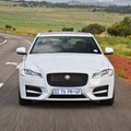 Jaguar XF has sharp claws