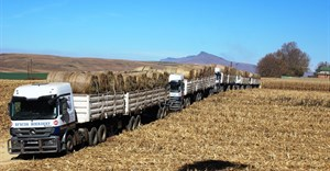 Bencor Boerdery's 10 transport vehicles leaving Zuivergoud Farm in unison for Hluhluwe - Photo credited to Jonathan Burton