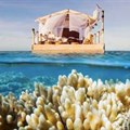 Spend a night at the Great Barrier Reef