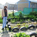 - Sizwe Nyuka Mlenzana at his Ekasi Green Project. Photo: Pumla Tuko
