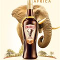 #FreshOffTheShelf: Amarula launches new bottle to celebrate elephant conservation