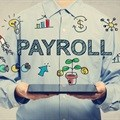 Professional personality traits of payroll practitioners