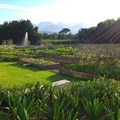 Boschendal food garden tour invites all green fingered foodies