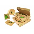 Addressing packaging waste one pizza box at a time