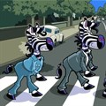 #MandelaMonth: A zebra crossing with a difference