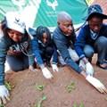 #MandelaMonth: SANParks gets green-fingered this Mandela Day