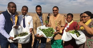 Paul Ntshabele of Sakata; Siviwe Mponzo, a St John's College student; Ndaba Mandela of Africa Rising Foundation; Rural Development and Agrarian Reform MEC, Mlibo Qoboshiyane; Nangamso Phuthumani of Milton Mbekela and KSD Mayor, Councillor Nonkoliso Ngqongwa showing off some of the vegetables seeds planted in 67 plots at Nelson Mandela's farm in Qunu as part of Nelson Mandela Day. Image credit: Mvusiwekhaya Sicwetsha
