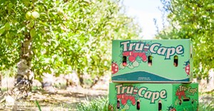 Tru-Cape's successful harvest tempered by currency volatility