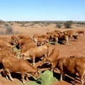 "AFASA approves ""My Kraal"" app for member farms"