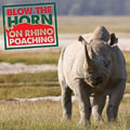 Blowing the horn on rhino poaching