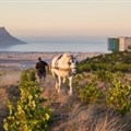 Experience the full circle of life with Waterkloof