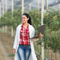 New postgrad diploma for agronomists launched at SU