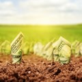 Bankable African agri-projects lead to investment