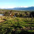 Spend a weekend in Tulbagh