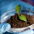 #InnovationMonth: Soil treatment that's just right
