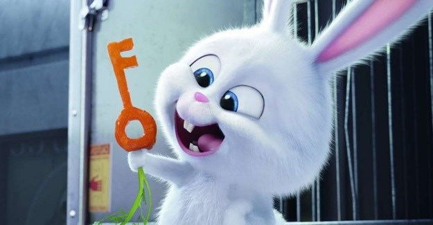 Uncover the delightful 'Secret Life of Pets'
