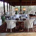 Royal Malewane bush luxury at the very top of the food chain