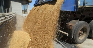Grain Council calls for sensitisation on rules of origin