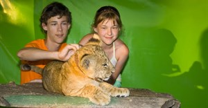 TripAdvisor bans booking activities with captive animals