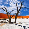 Frozen in time: the alluring beauty of Namibia's Deadvlei