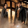 'Fantastic Beasts and Where to Find Them' captures the Potterverse magic